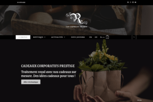 Read more about the article Notre Nouvelle Boutique en Ligne